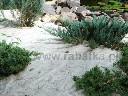 Agrow��knina do okrywania na przymrozki P17 3,2x10m