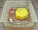 Uniwersalny odchowalnik dla piskl�t - kompletny zestaw ze sztuczn� kwok�