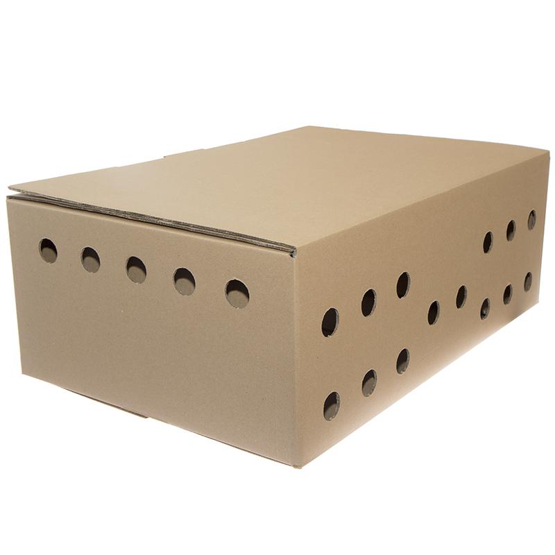 Karton do transportu bażantów 60 x 40,5 x 22 cm  - zdjecie 1