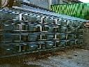 Klatka dla bażantów - segment do pozyskiwania jaj - zdjecie 3
