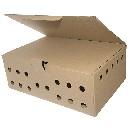 Karton do transportu bażantów 60 x 40,5 x 22 cm  - zdjecie 2