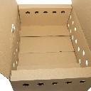 Karton do transportu bażantów 60 x 40,5 x 22 cm  - zdjecie 4