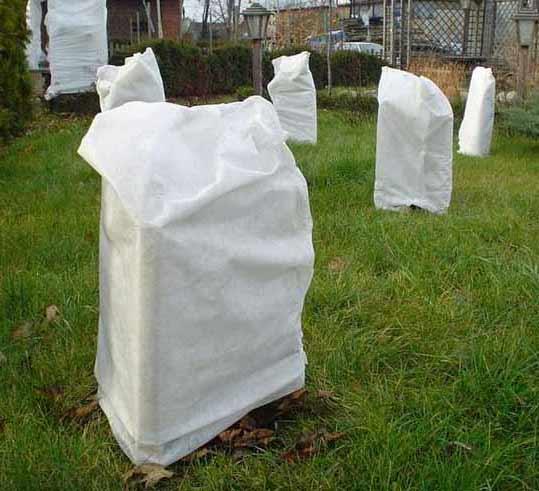 Agrowłóknina biała wiosenna P17 1,6x5m - zdjecie 1