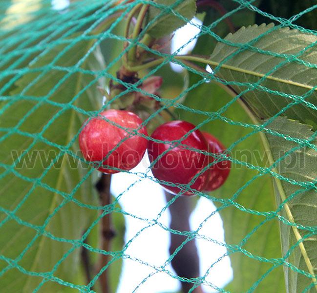 Siatka dziana na ptaki do ochrony drzew i krzewów owocowych 15 x 15 m - zdjecie 1
