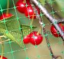 Siatka do ochrony czereśni i wiśni przed szpakami 4,8 x 5 m