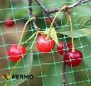 Siatka do ochrony czereśni i wiśni przed szpakami 4,8 x 5 m - zdjecie 2