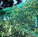 Siatka dziana na ptaki do ochrony drzew i krzewów owocowych 15 x 15 m - zdjecie 3