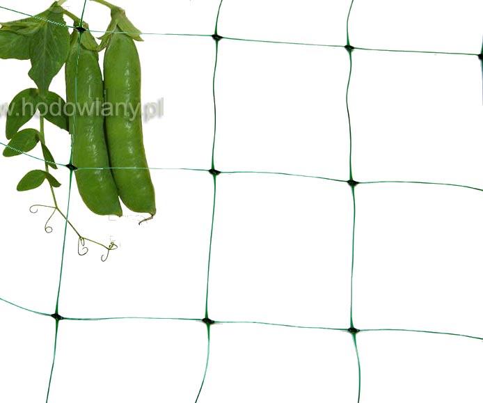 Siatka pod rośliny pnące 2x10m - zdjecie 1
