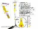 Regulator wysokości linii poidła - żółty (TAV 1) - zdjecie 3