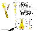 Regulator wysokości linii poidła - żółty (TAV 1) - zdjecie 4