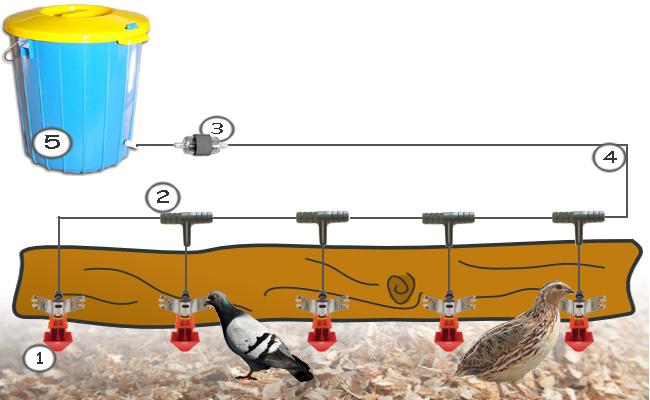 Mini system Pojenia dla gołębi i przepiórek PIK-drink