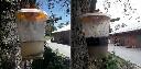 REDTOP Giant 8l pułapka na muchy i osy z wabikiem - zdjecie 5