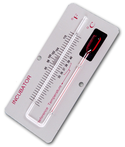 Termometr inkubatora 35-40 st. na  płytce