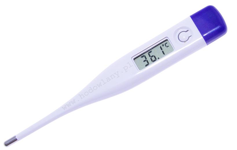 Termometr elektroniczny do pomiaru temperatury w aparacie lęgowym - zdjecie 1