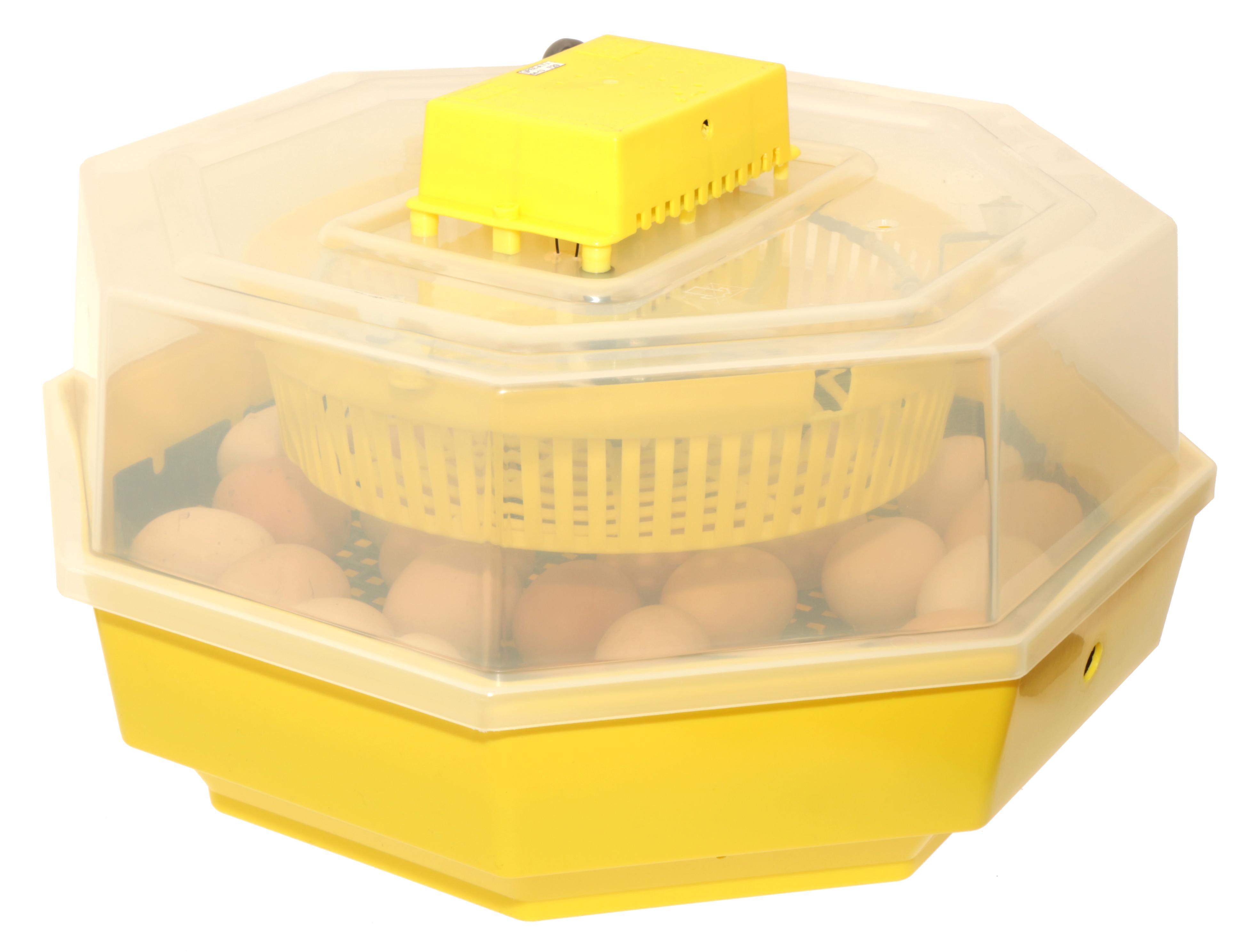 Inkubator z klujnikiem iBator HOME 60 - zdjecie 1