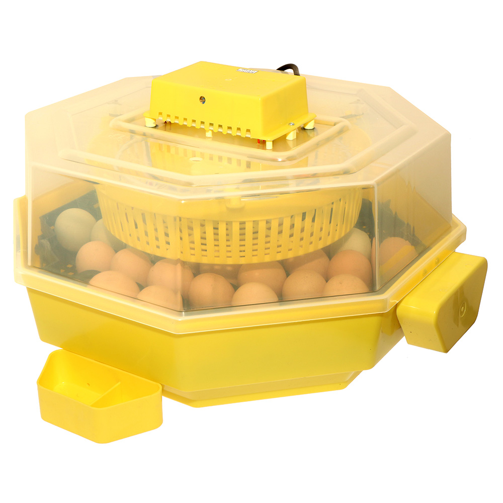 Inkubator lęgowy + klujnik iBator Home AUTO z silnikiem do obrotu jaj - zdjecie 1