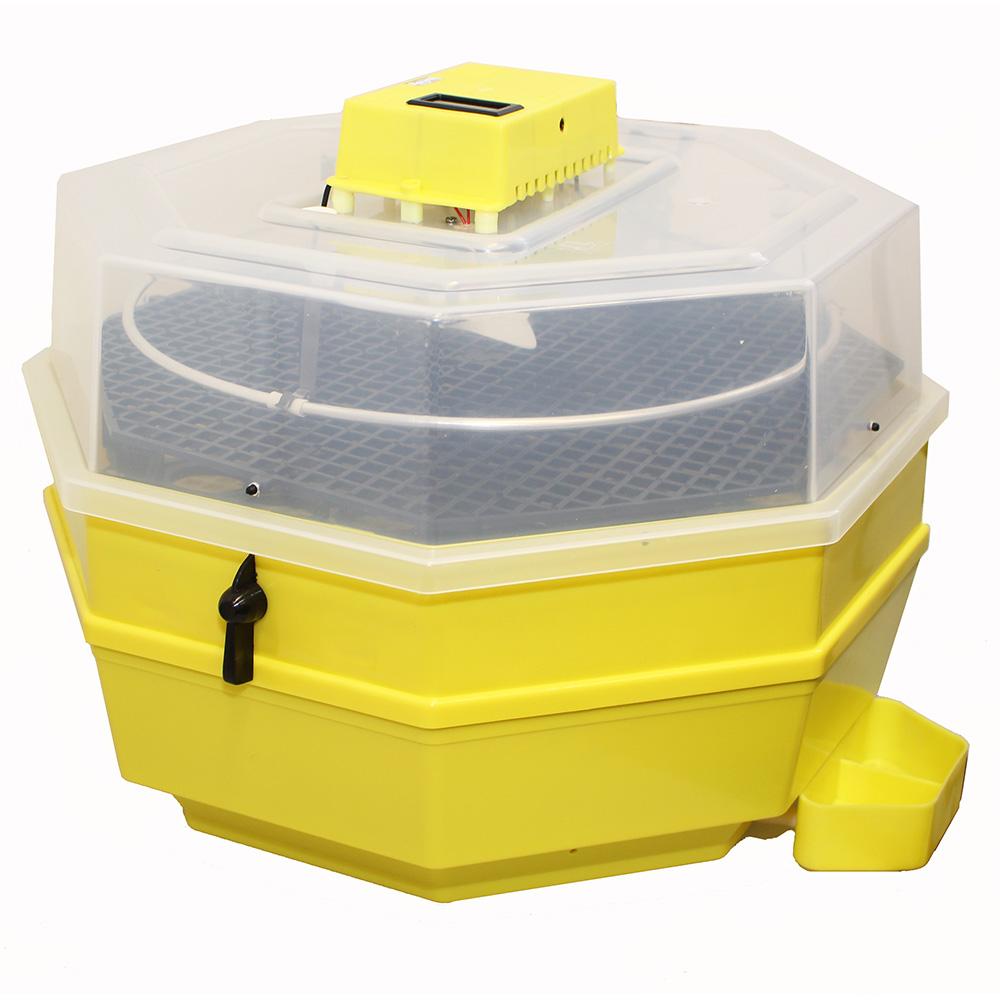 Inkubator iBator HOME 120 z wyświetlaczem temp. i wilgotności + zbiornik na wodę - zdjecie 1