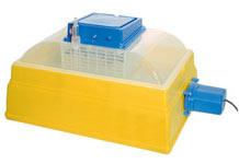 Inkubator średnio duży 54-ka automatyczne obracanie jaj