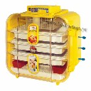 Inkubator do wylegu jaj 120-ka półprofesjonalny
