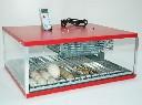 Inkubator  Infermo iBator MES 82 jaja półautomat