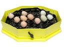 Przystawka zwiększająca dwukrotnie pojemność jaj inkubatora iBator Home