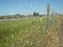 Siatka leśna do ochrony upraw i dla bydła 160 cm - rolka 50 metrów - 160/13/30 - zdjecie 3