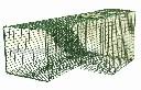 Łapacz żywołowny na lisy zastawiany w norze z zapadką grawitacyjną