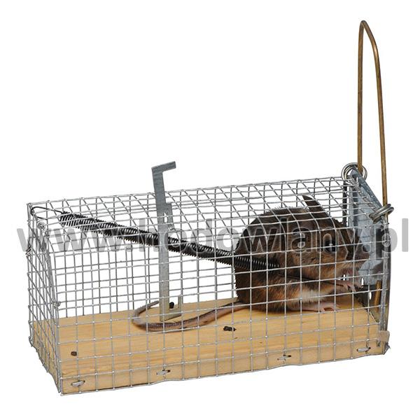 Myszołapka, pułapka żywołowna na myszy - humanitarna - zdjecie 1