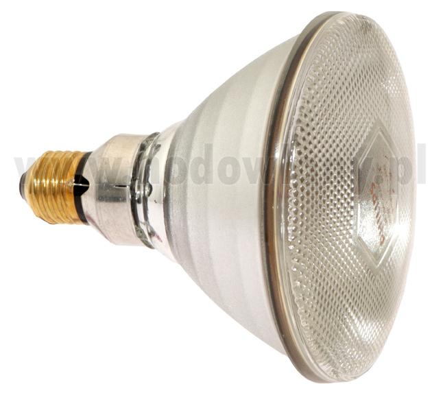 Promiennik - lampa grzejna biała żarówka PHILIPS 175WAT (PAR38 IR 175C) - zdjecie 1