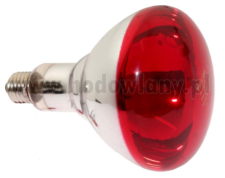 Promiennik lampa promiennikowa podczerwona PHILIPS 150WAT - zdjecie 1