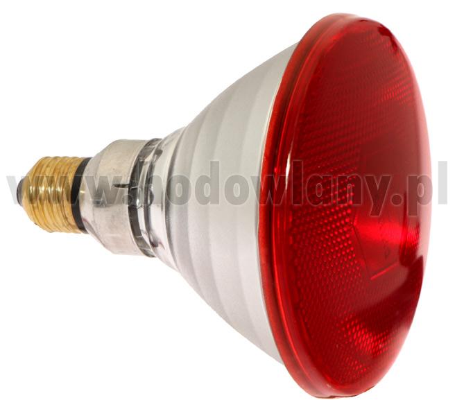 Promiennik - lampa podczerwona żarówka PHILIPS 175WAT - zdjecie 1