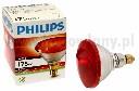 Promiennik - lampa podczerwona żarówka PHILIPS 175WAT - zdjecie 2