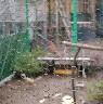 Siatka do budowy wolier z oczkiem sześciokątnym oczko 1,3cm, 25mb powlekana - zdjecie 2