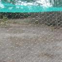 Siatka ogrodzeniowa izola oczko hex  1,6cm, 50mb ocynkowana (na woliery) - zdjecie 2