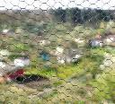 Gołebnik - siatka z oczkiem sześciokątnym oczko 1,3cm, 25mb powlekana