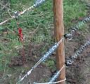 Łącznik taśmy ogrodzenia elektrycznego - zdjecie 2