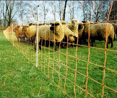 Siatka ogrodzenia elektrycznego dla owiec i kóz wys. 90cm dł. 50m - pomarańczowa - zdjecie 1